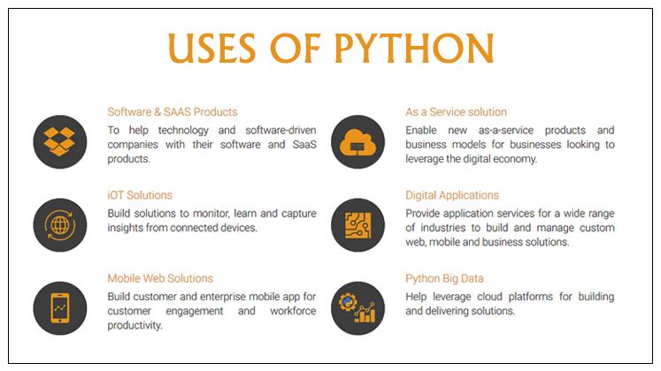 Python Web Design Services